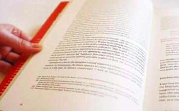 essay写作字数