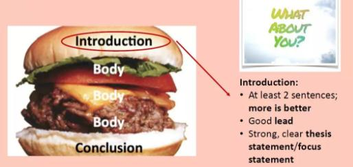 expository essay的introduction